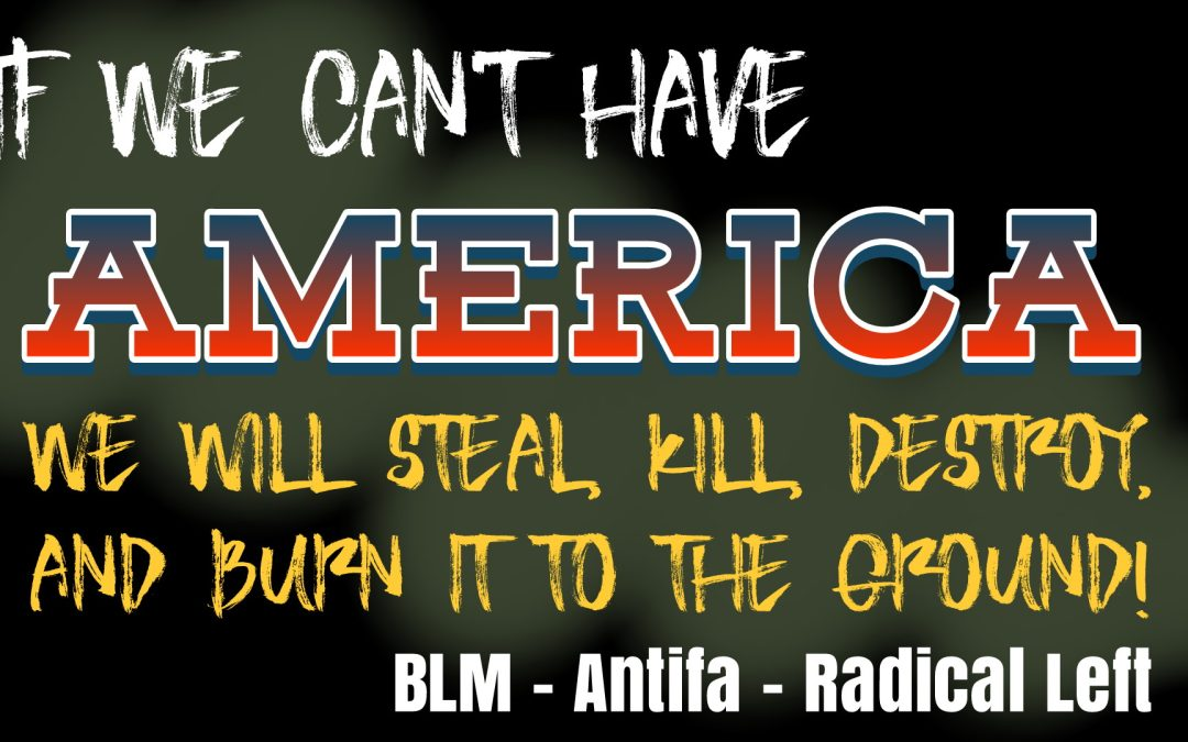 We Will Kill, Steal, Destroy and Burn America to the Ground